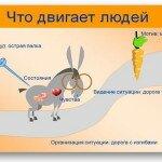 Мотивация на успех — у каждого своя морковка